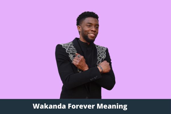 Wakanda Forever Meaning
