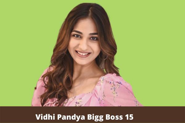 Vidhi Pandya bigg boss 15